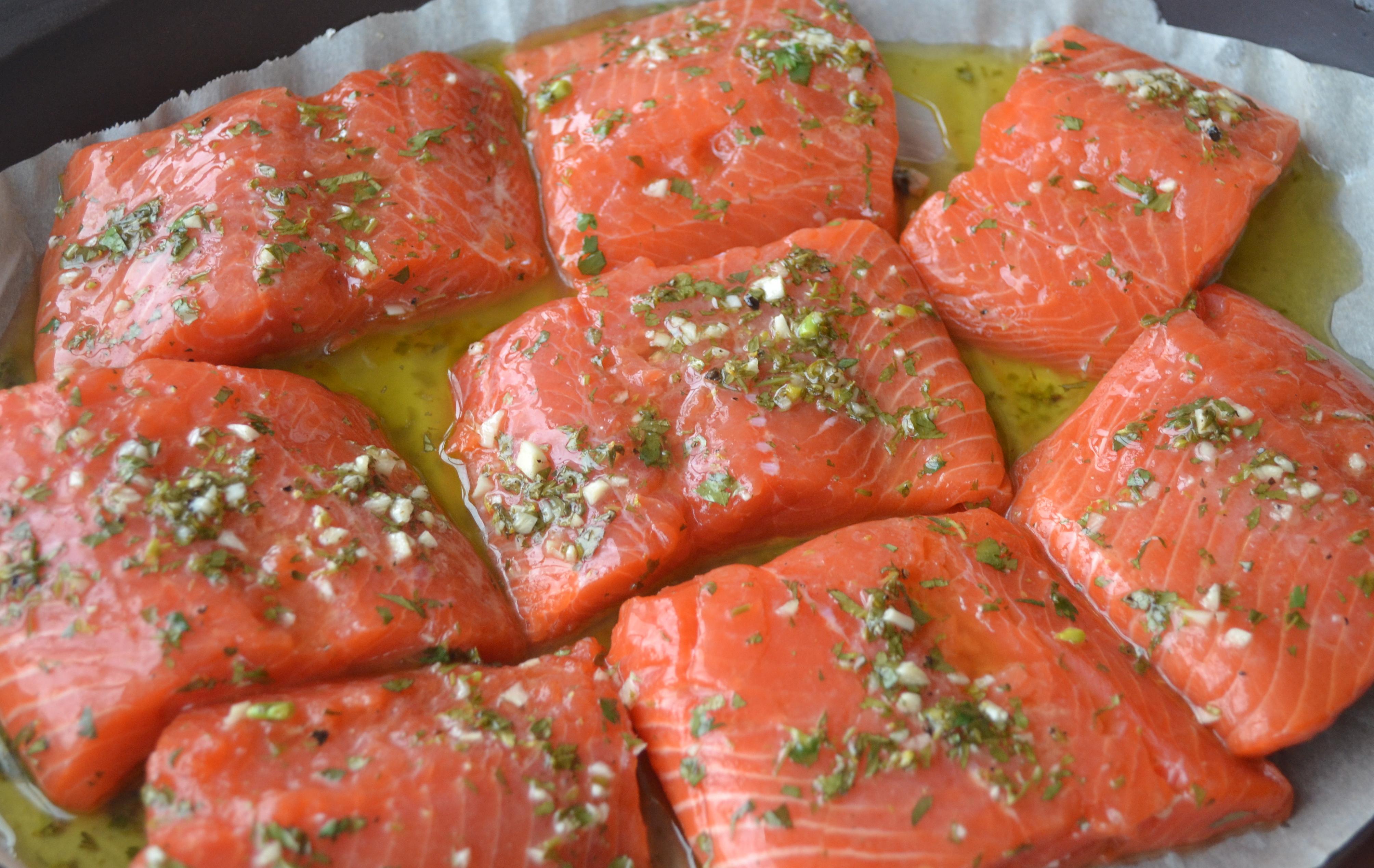 Salmon Nourishing Vancouver